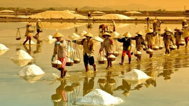 Hoi An to Quang Ngai by Private car