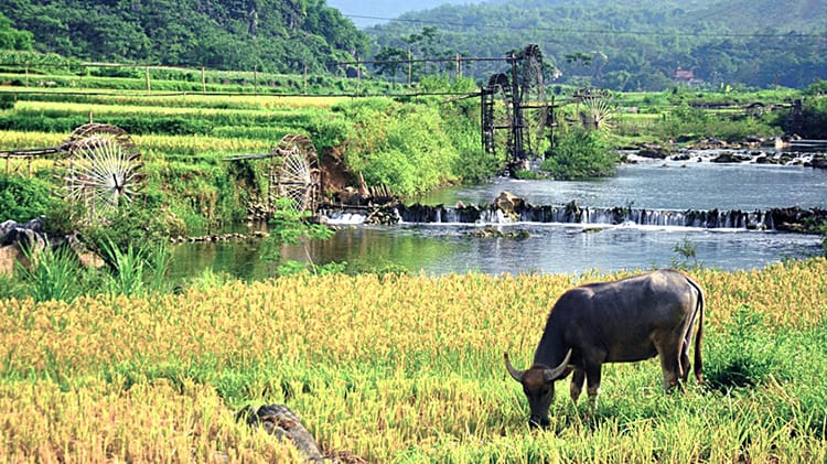 Ha Noi to Pu Luong by Private Car